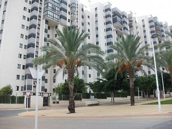 Испания бенидорм аренда апартаментов одесса